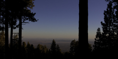 trees forest sunrise canon table desert angeles top national campground 1740mm anf anglesnationalforest