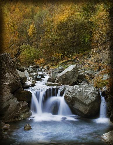 alberi fiume natura val giallo autunno colori giochi dacqua pellice