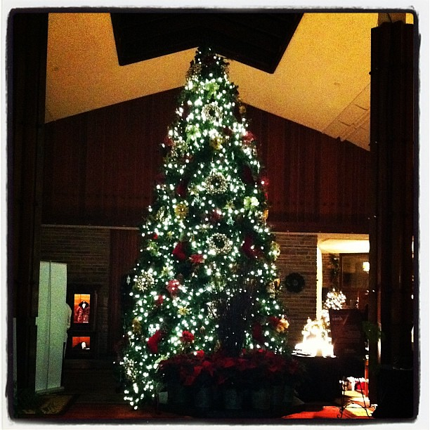 Christmas in november at jasper park lodge merry about town for Decore hotel jasper