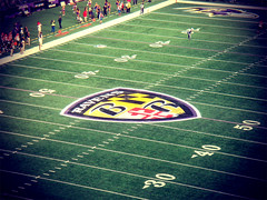 Ravens: Maryland Pride