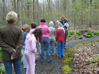 School Tour with Garden Club Guides at Swamp