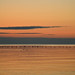 rush hour   lake ontario by TW Collins