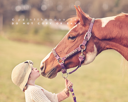 { a girl and her horse }