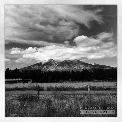 winter summer arizona horses white snow black fall field grass photography photo san flagstaff peaks logan fransisco iphone humphreys brumm firstsnowfall instagram