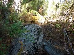 Sentier Capeddu-Sari : la portion de sentier pourrie par les tempêtes et les balises jaunes après la source de Capeddu
