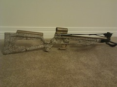 rifle(0.0), gun barrel(0.0), bow and arrow(0.0), weapon(1.0), shotgun(1.0), firearm(1.0), gun(1.0),