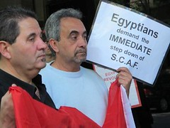 Supporting Egyptian Revolution