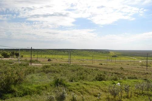 I prati del Valle Inferiore del Río Negro.