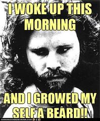 I growed myself a Beard meme
