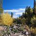 Fall In The Sierras 8618