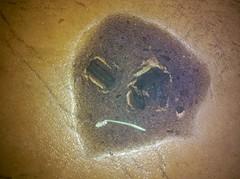 Black Bean Stain :/