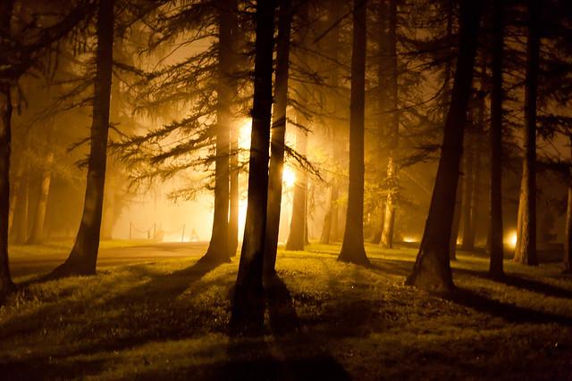 Night Fog - Albany, NY - 2011, Sep - 01.jpg