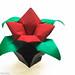 Origami 2011