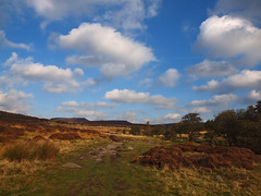 Grindleford to Longshaw Estate walk