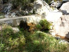 Sentier Fumicosa/Samulaghja : Captage d'Argazavu