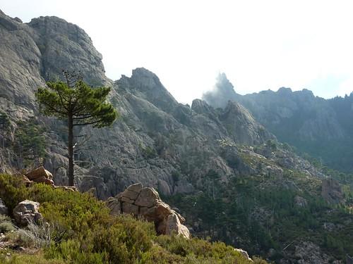 Sentier Fumicosa/Samulaghja : le sentier le long des parois de la crête de Manzaghja et Punta Samulaghja