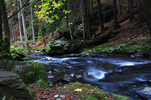 autumn fall river landscape czech valley area czechrepublic protected naturalreserve českárepublika chotebor chotěboř vrchy bilek bílek doubrava zeleznehory údolídoubravy železnéhory udolidoubravy údolídoubravky udolidoubravky doubravarivervalley ždárskévrchy ždárské