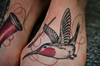 Close-up of the hummingbird Month-old feet tattoos