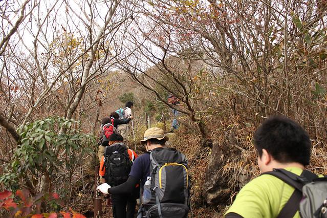 20111112_金時山_0025