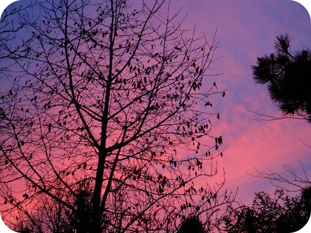 true colours photo of sky at dusk