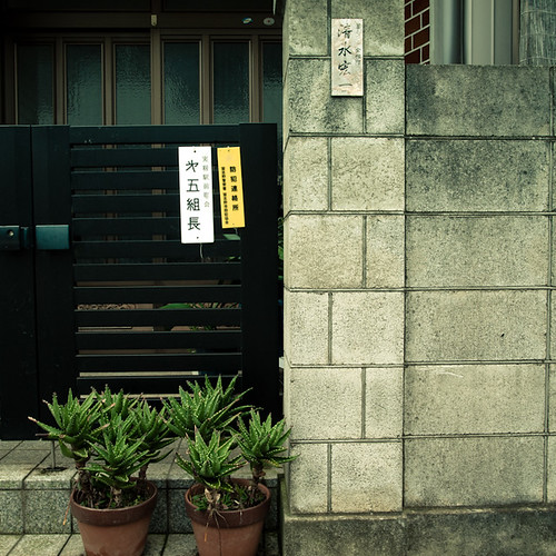 Aloe Gate Cinderblock Wall