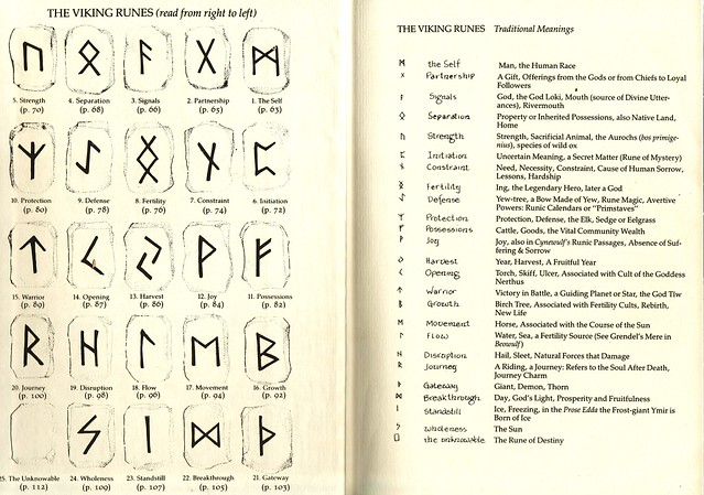Ancient Viking Symbols and Meanings http://www.flickr.com/photos/calsidyrose/6415176031/