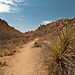 Trail Bound for Nowhere - Big Bend National Park, Texas - <span>© 2011 Jeff Lynch Photography, Ltd. All Rights Reserved. Available for Licensing and Purchase.Shot taken with a Canon EOS 5D Mark II set on aperture (Av) priority using an EF 24-105mm f/4L IS USM lens tripod mounted. The exposure was taken at 47mm, f/14 for 1/60th of a second at ISO 100 using a Singh-Ray warming polarizer filter. Post capture processing was done in Adobe's Lightroom 3.Blog - Serious Amateur PhotographyFollow me on Twitter</span>