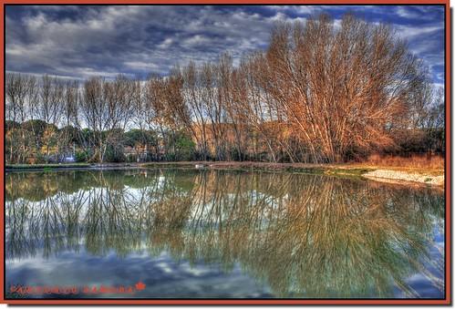 trees cloud paisajes color reflection tree water clouds landscape arbol lago landscapes agua árboles colours arboles paisaje colores nubes reflejo árbol hdr nube reflejos antoniozamora