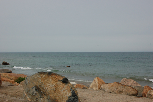 rocky-shore.jpg