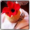 White chocolate and raspberry cupcake at Cuckoo's Bakery