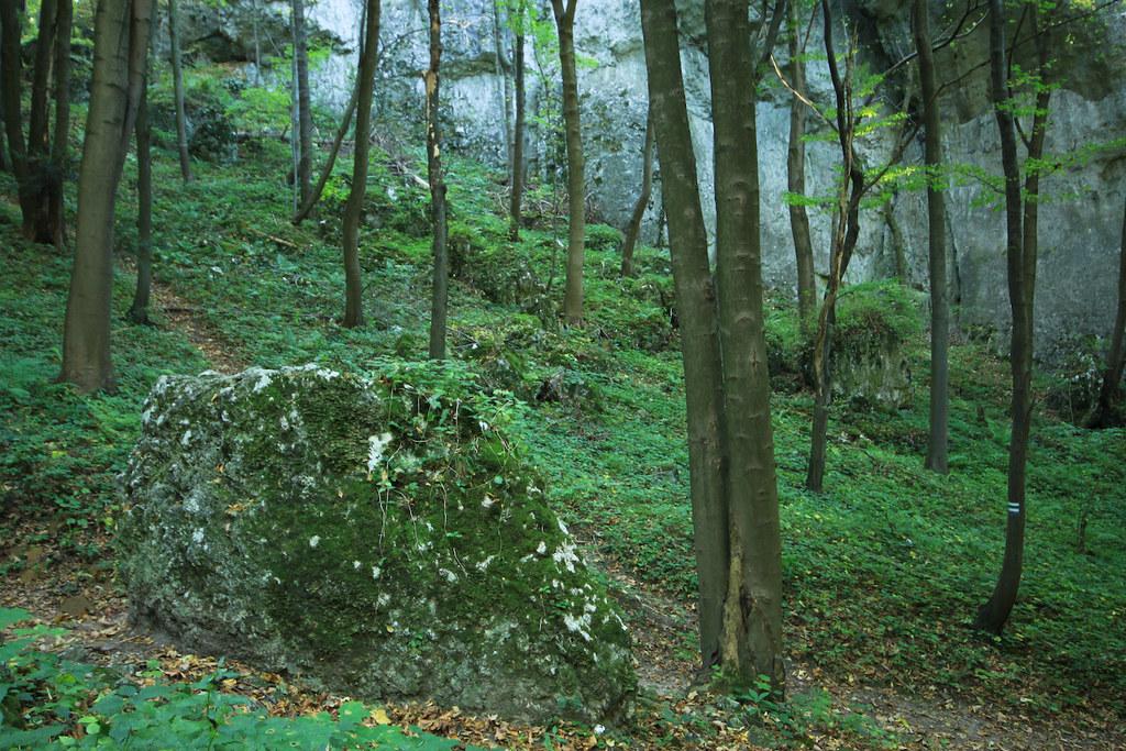 Национальный парк Польши