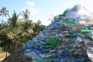 Roof made from plastic bottles