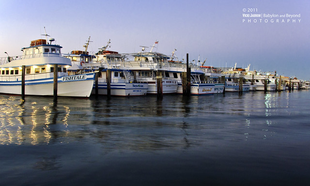Line up of fishing boats at captree state park flickr for Captree state park fishing