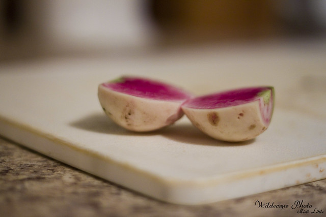 watermelonradish4