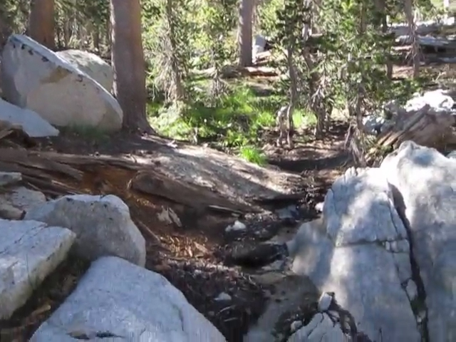 0749 Newton Drury to Marion Mountain - Hidden Spring Video