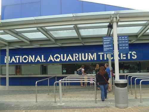Newport aquarium discount coupons