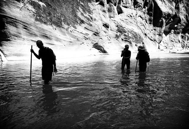 Silhouettes at the Narrows