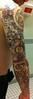 Arm Detail Back
