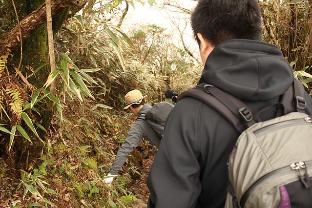 20111112_金時山_0046