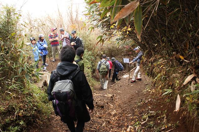 20111112_金時山_0047