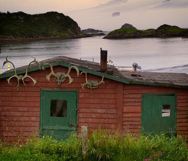 house_20110731_D_064617