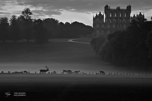 Wollaton Hall Nottingham October Dawn