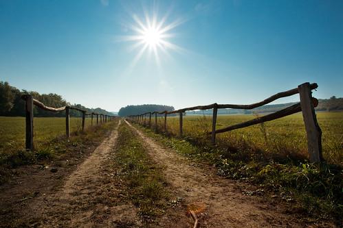 morning sun nature hungary okt börzsöny nógrád kéktúra canoneos5dmarkii mp3pintyo