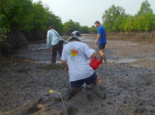 Mega Marine Survey: Walking on our knees