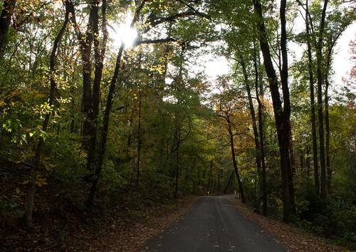 Park Road2