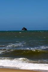 Palm Cove_11