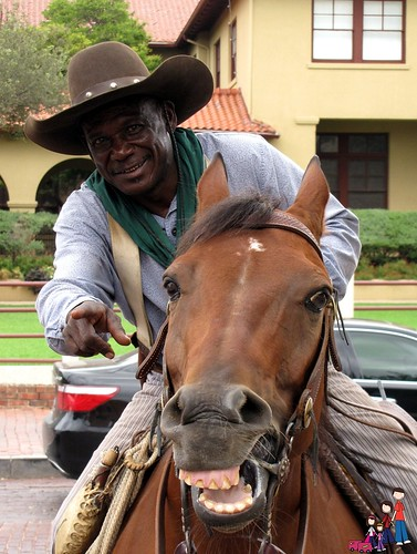 Smiling horse and Drover and Fort Worth Stockyards