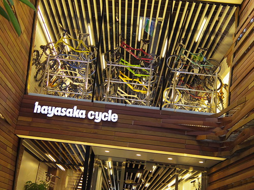 Hayasaki Cycle