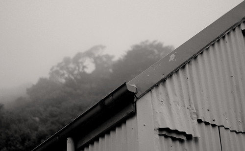 Field Hut Fog