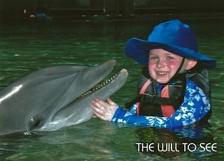 dolphin - jack